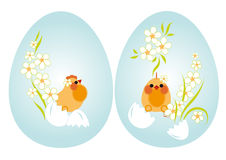 Easter eggs and chickens. Easter eggs. But the blue background of chickens and flowers Stock Image
