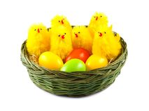 Easter Eggs and Chickens in basket Royalty Free Stock Photos