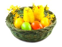 Easter Eggs and Chickens in basket on white background Royalty Free Stock Images