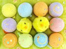 Easter eggs and chickens in an eggs case Stock Photography