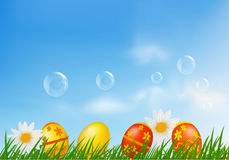 Easter eggs and chickens on green grass. Stock Image