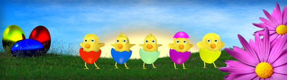 Easter eggs and chickens on green grass Royalty Free Stock Photo
