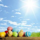 Easter eggs and chickens stock photography