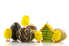 Easter eggs and chicks Stock Photos