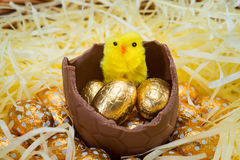 Easter Eggs and Chicks Royalty Free Stock Photo