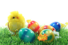 Easter eggs and chicks in a meadow. Chicks with Easter eggs on a flower meadow royalty free stock photography