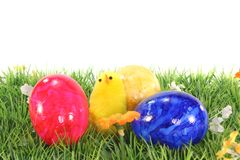Easter eggs and chicks on a meadow Royalty Free Stock Photo