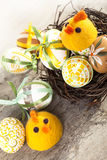 Easter Eggs and chiskens Royalty Free Stock Photography