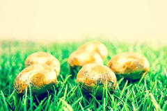 Easter eggs Chocolate Stock Photography