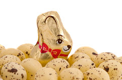 Easter eggs and chocolate rabbit isolated on white Stock Photography