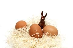 Easter egg food and ritual symbol. Easter eggs in Christianity symbol of the coffin and the resurrection of one egg o in a nest of wood shavings royalty free stock photography