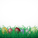 Easter eggs with circles in grass on a white shining background Stock Image