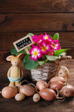 Easter eggs with clay rabbit and primula flowers in pot Royalty Free Stock Images