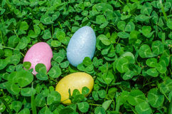 Easter eggs in clover Royalty Free Stock Photography