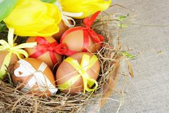 Easter Eggs with Colorful Bows in Nest Stock Photography