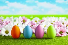 Easter eggs and colorful flowers on the grass and blue sky background royalty free stock image