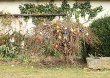 Easter eggs. Colorful easter eggs hanging on and under a tree in garden Stock Photography