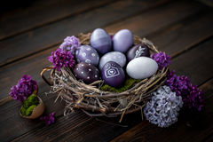 Easter eggs. Colorful Easter eggs in a nest Stock Image