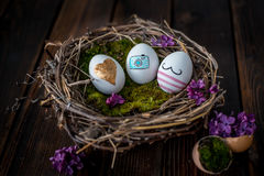 Easter eggs. Colorful Easter eggs in a nest Royalty Free Stock Photo