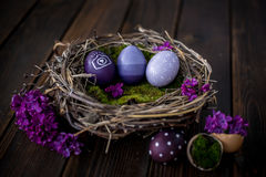 Easter eggs. Colorful Easter eggs in a nest Stock Photos