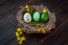 Easter eggs. Colorful Easter eggs in a nest Stock Images