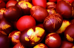 Easter eggs. Colorful easter eggs painted in boiled onion skins Stock Image