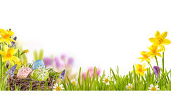 Easter Eggs in a colorful spring meadow. Traditional decorated Easter Eggs in a bird nest nestling in fresh green grass in a colorful spring meadow with royalty free stock images