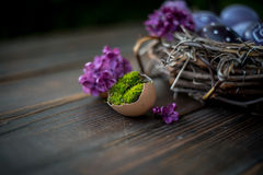 Easter eggs. Colorful Easter eggs on a wooden table with lilac and moss Royalty Free Stock Photo