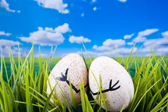 Easter Eggs Concept Royalty Free Stock Photo
