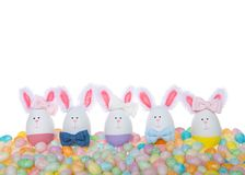 Easter Eggs crafted into bunnies, boys and girls, wearing bow ties. And bows on ear sitting in pastel colored speckled jelly beans isolated on white stock image