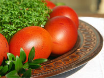 Easter eggs and cress Stock Photography