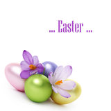 Easter eggs and crocus flowers Royalty Free Stock Images