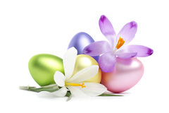 Easter Eggs with crocus flowers Royalty Free Stock Photos