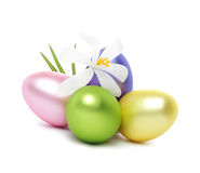 Easter Eggs with crocus flowers Stock Photos