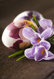 Easter eggs and crocuses Royalty Free Stock Photography