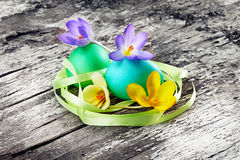 Easter eggs with crocuses on wood background Stock Image