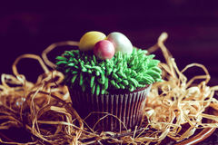 Easter eggs on the cup cake Royalty Free Stock Images