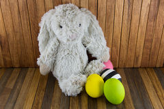 Easter eggs and cute plush Bunny on wood background Stock Photography