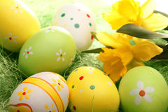 Easter eggs and daffodil Stock Images