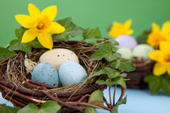 Easter eggs and daffodils Stock Photos