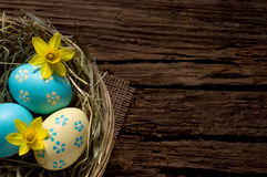 Easter eggs and daffodils on old wood with copyspace Royalty Free Stock Image