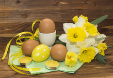 Easter eggs and daffodils Royalty Free Stock Images