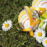 Easter eggs and daisies Stock Photography