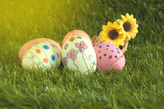 Easter eggs and daisies Royalty Free Stock Photo
