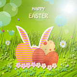 EASTER. Eggs with daisy and grass Stock Photography