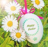 An Easter eggs with daisy on grass Royalty Free Stock Photo