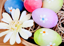 Easter eggs decorated with daisies tucked in a basket Royalty Free Stock Image
