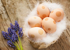 Easter eggs decorated with dots Royalty Free Stock Photos