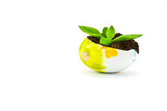 Easter eggs decorated and earth Royalty Free Stock Photo