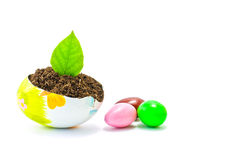 Easter eggs decorated and earth Royalty Free Stock Photography